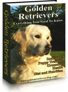 Ebook cover: Golden Retriever