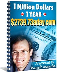 Ebook cover: 1 Million Dollars In 1 Year
