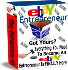 Ebook cover: Ebay Entrepreneur kit