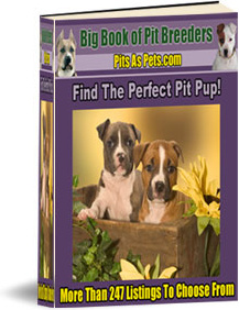 Ebook cover: BIG Book of Pit Breeders