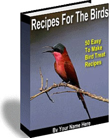 Ebook cover: Recipes For The Birds