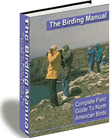 Ebook cover: The Birding Manual