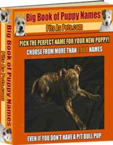 Ebook cover: BIG Book of Puppy Names
