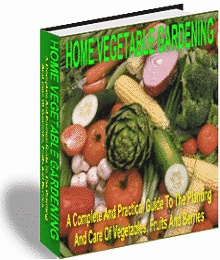 Ebook cover: Home Vegetable Gardening