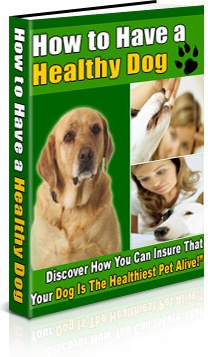 Ebook cover: How To Have A Healthy Dog