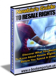 Ebook cover: Newbie's Guide To Resale Rights