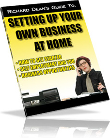 Ebook cover: Setting up your own business at home