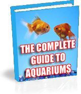 Ebook cover: The COMPLETE guide to Aquariums