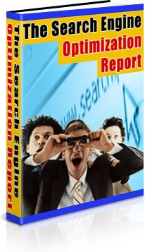 Ebook cover: The Search Engine Optimization Report