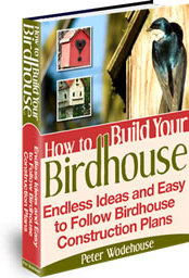 Ebook cover: How to Build Your Birdhouse