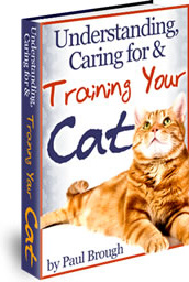Ebook cover: Understanding, Caring For And Training Your Cat