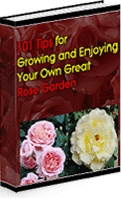Ebook cover: 101 Tips For Growing And Enjoying Your Own Great Roses!