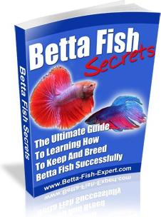 Ebook cover: Betta Fish Secrets