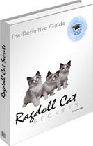 Ebook cover: Ragdoll Cat Secrets