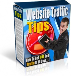 Ebook cover: Website Traffic Tips IN 10 DAYS!