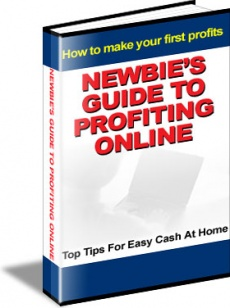 Ebook cover: The Newbie's Guide To Profiting Online