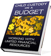 Ebook cover: Child Custody on a Budget