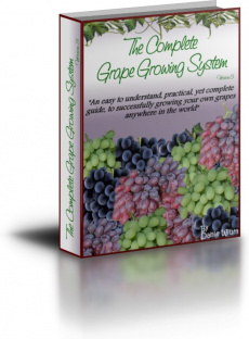 Ebook cover: The Complete Grape Growers Guide