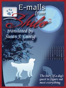 Ebook cover: E-mails From Shilo