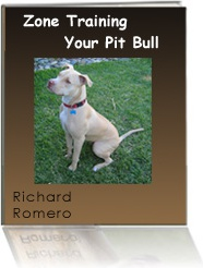 Ebook cover: Pit Bull Training System