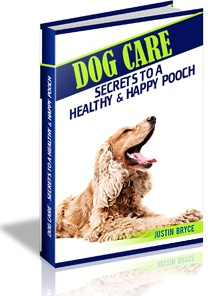 Ebook cover: Dog Care