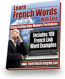 Ebook cover: French Link Words - French Learning Package