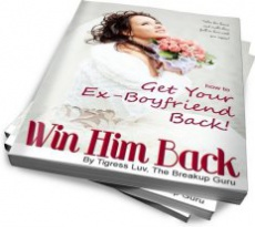 Ebook cover: How to Win Back Your Ex-boyfriend