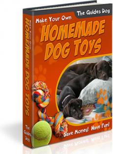 Ebook cover: HomeMade Dog Toys