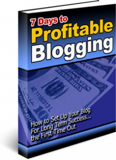 Ebook cover: 7 Days to Profitable Blogging
