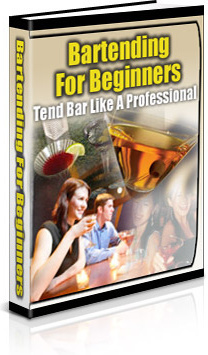 Ebook cover: Bartending for Beginners