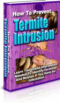 Ebook cover: How To Prevent Termite Intrusion