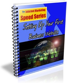 Ebook cover: Setting Up Your First Business Website