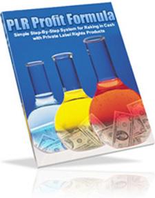 Ebook cover: PLR Profit Formula
