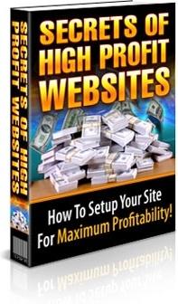 Ebook cover: The Secrets to High Profit Websites