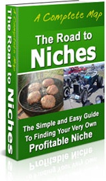 Ebook cover: The Road to Niches