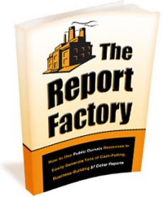 Ebook cover: The Report Factory