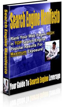 Ebook cover: Search Engine Manifesto