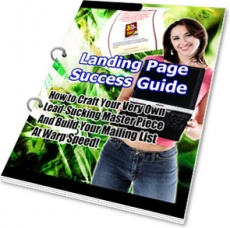 Ebook cover: Landing Page Success Guide