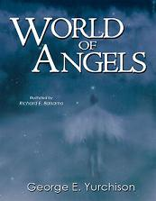 Ebook cover: Discover the World of Angels