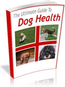 Ebook cover: The Ultimate Guide to Dog Health!