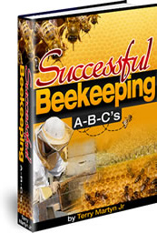 Ebook cover: Successful Beekeeping A-B-C's