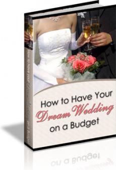 Ebook cover: 101 Wedding Tips