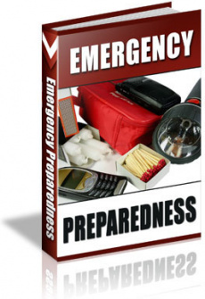 Ebook cover: 101 Emergency Tips