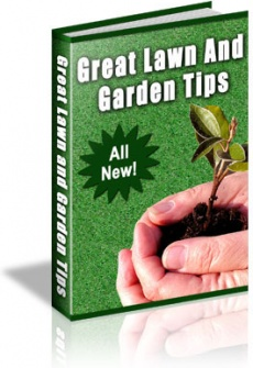 Ebook cover: 101 Gardening Tips
