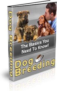 Ebook cover: Dog Breeding - What You Need To Know!