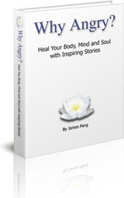 Ebook cover: Why Angry? Heal Your Body, Mind and Soul