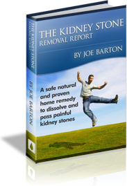 Ebook cover: The Kidney Stone Removal Report