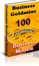 Ebook cover: Business Goldmine