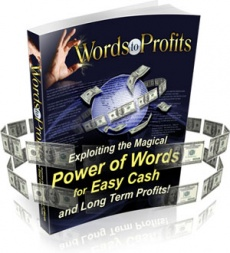 Ebook cover: Words to Profits