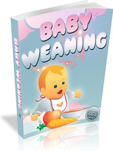 Ebook cover: Baby Weaning